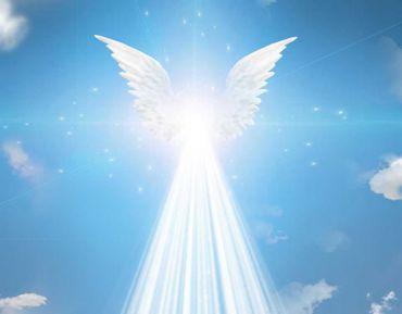 Los ángeles nuestros aliados